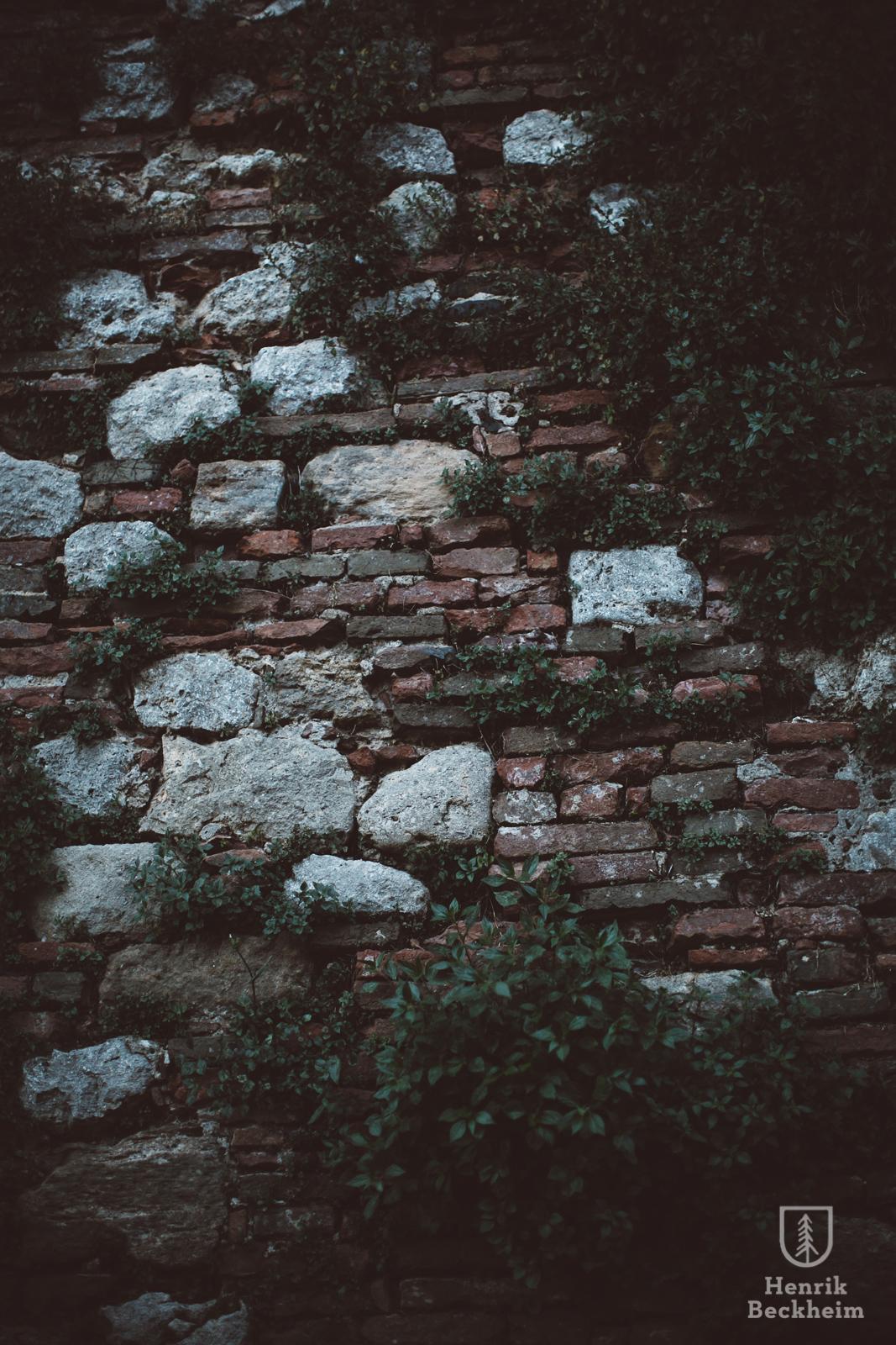 Tuscany00007